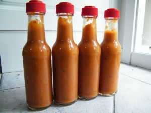 Homemade Hot Sauce Website 300x225 Homemade Hot Sauce